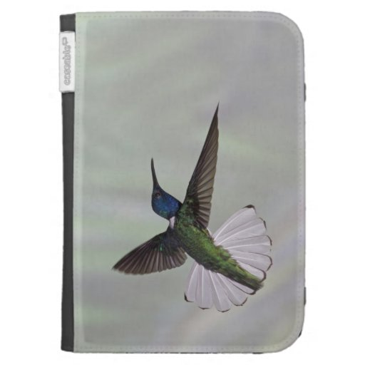White-necked Jacobin Florisuga melivora Costa 2 Kindle 3G Covers