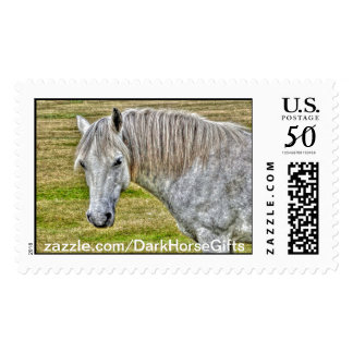 White New Forest Pony Wild Horse Postage