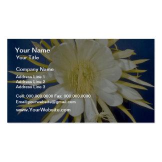 white Night blooming cereus (Hylocereus undatus) f Business Card Template