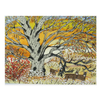White Oak and Whitetails Postcard