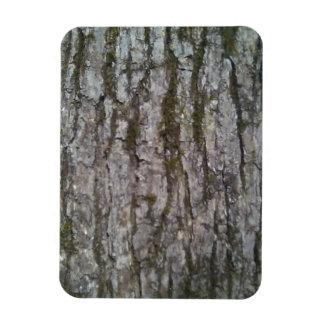 White Oak Magnet