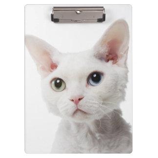 White odd-eyed cat 2 clipboard