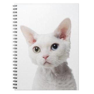 White odd-eyed cat 2 notebook