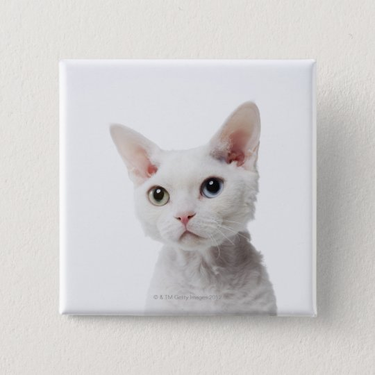 White odd-eyed cat 2 pinback button