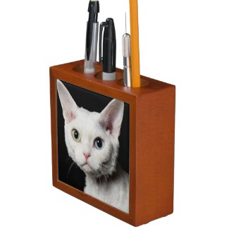 White odd-eyed cat 3 pencil holder