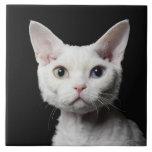 White odd-eyed cat large square tile