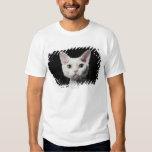 White odd-eyed cat shirts