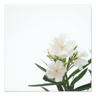 White Oleander Personalized Announcements
