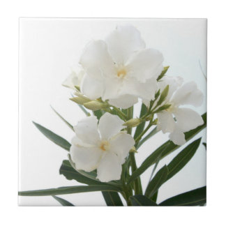 White Oleander Small Square Tile