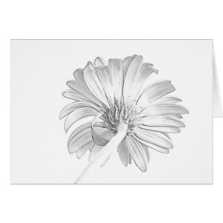 White on White Note Card