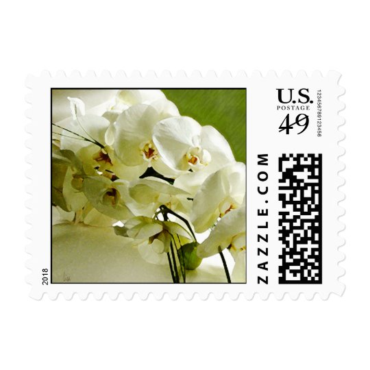 white orchid 1 postage