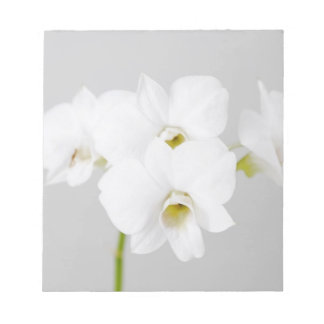 White Orchid (2) Memo Notepad