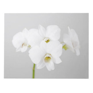 White Orchid (2) Note Pad