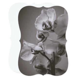 White Orchid 5x7 Invitation Bracket