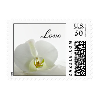 White Orchid and Veil Wedding Love Postage