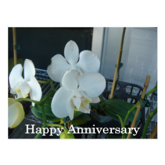 White orchid anniversary postcard