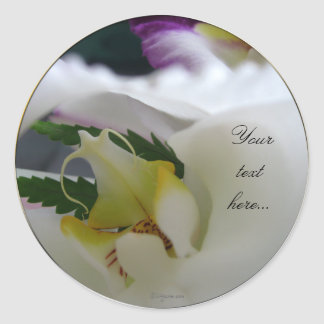 White Orchid Beauty Wedding Invitations Seals Classic Round Sticker