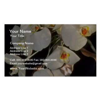 white Orchid bridal bouquet - Phalaenopsis flowers Business Card