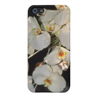 white Orchid bridal bouquet - Phalaenopsis flowers iPhone 5 Cases