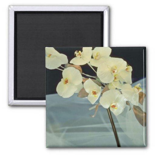 white Orchid bridal bouquet - Phalaenopsis flowers Fridge Magnets