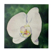 White Orchid Ceramic Tile