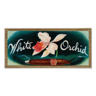 White Orchid Cigar Label Poster