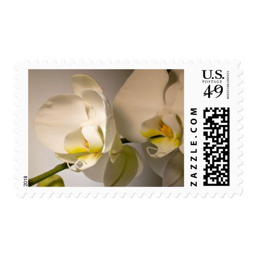 White Orchid Custom Event And Wedding Postage