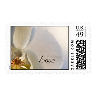 White Orchid Elegance Love Wedding Postage