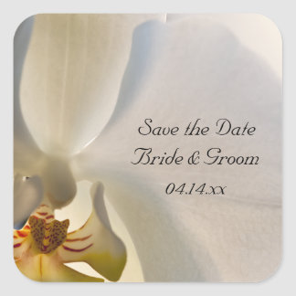 White Orchid Elegance Wedding Save the Date Square Sticker