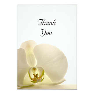 White Orchid Flower Flat Thank You Notes Card