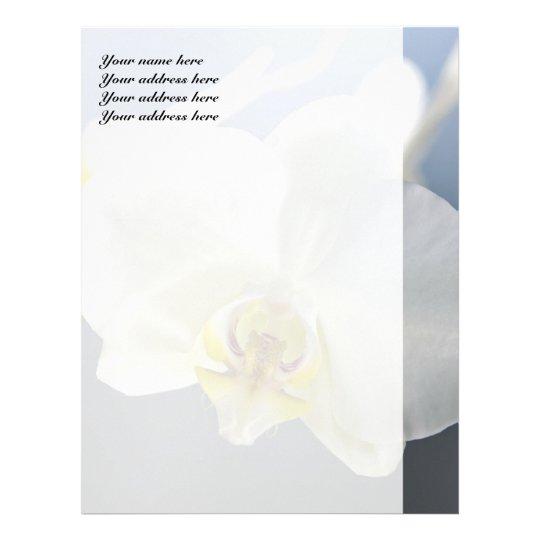 White Orchid Flower Letterhead