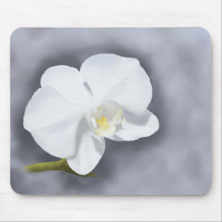White Orchid Flower Mouse Pad