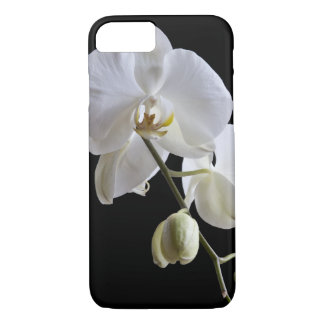 White Orchid Flower on Black iPhone 7 Case