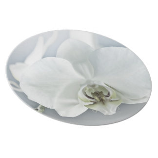 White Orchid Flower Plate