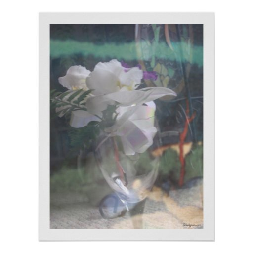 White Orchid Flowers Bouquet  Poster Prints