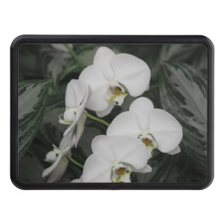 White Orchid flowers Hitch Cover