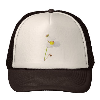 White Orchid Gifts and Apparel Trucker Hat