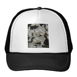 White Orchid Trucker Hats