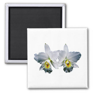 White Orchid Hawaiian Wedding Song 2 Inch Square Magnet