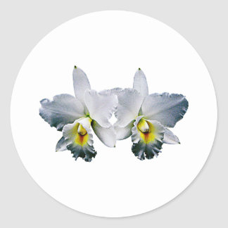 White Orchid Hawaiian Wedding Song Classic Round Sticker