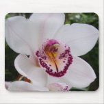 White Orchid I Beautiful Tropical Flower Mouse Pad