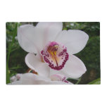 White Orchid I Beautiful Tropical Flower Placemat