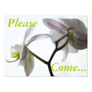 White Orchid 5.5x7.5 Paper Invitation Card