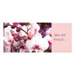 white orchid invitation template