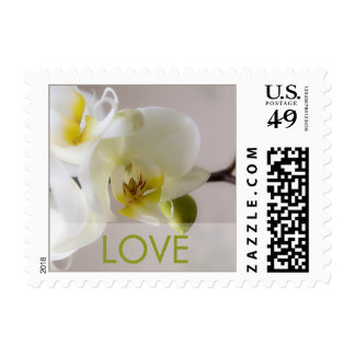 White Orchid Love Stamp