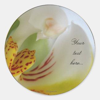 White Orchid Magic Wedding Invitation Seals Classic Round Sticker