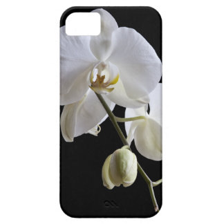 White Orchid on Black iPhone 5 Case-Mate iPhone SE/5/5s Case