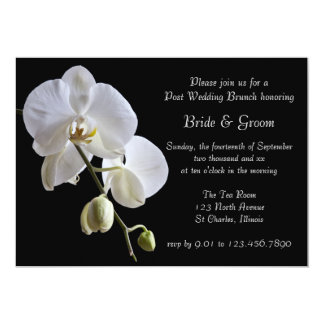 White Orchid on Black Post Wedding Brunch Card