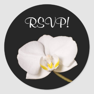 White Orchid On Black, RSVP! Classic Round Sticker