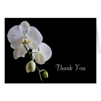 White Orchid on Black Thank You Card